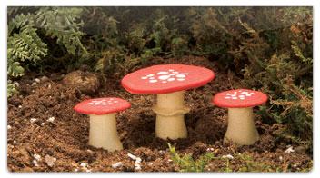 Enchanted Mushroom Checkbook Covers