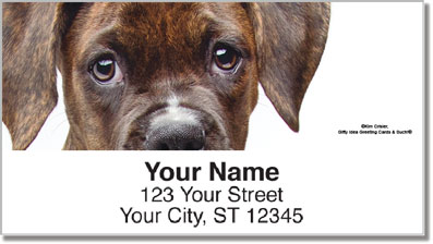 Boxer Pup Address Labels
