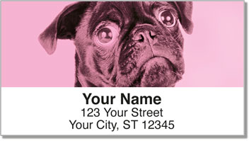 Colorful Pug Address Labels
