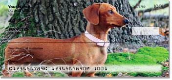 Dachshund Personal Checks