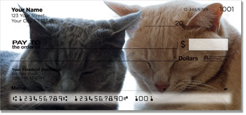 Cat Nap Personal Checks