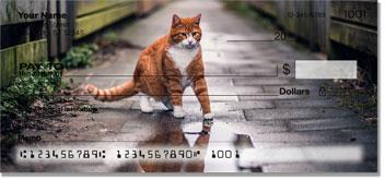 Alley Cat Checks