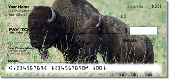 American Bison Personal Checks