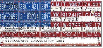 Americana License Plate Checks