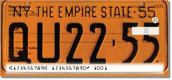New York License Plate Personal Checks