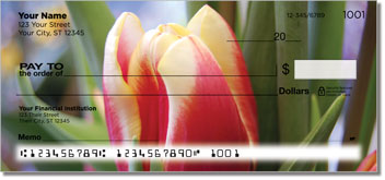 Tulip Personal Checks