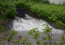 Discharge from the Harlem Road lift station bypass flows into Scajaquada Creek on May 25, 2017. (Jim Herr/Cheektowaga Chronicle)