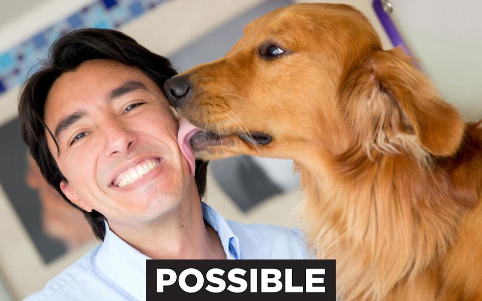 Man dog love