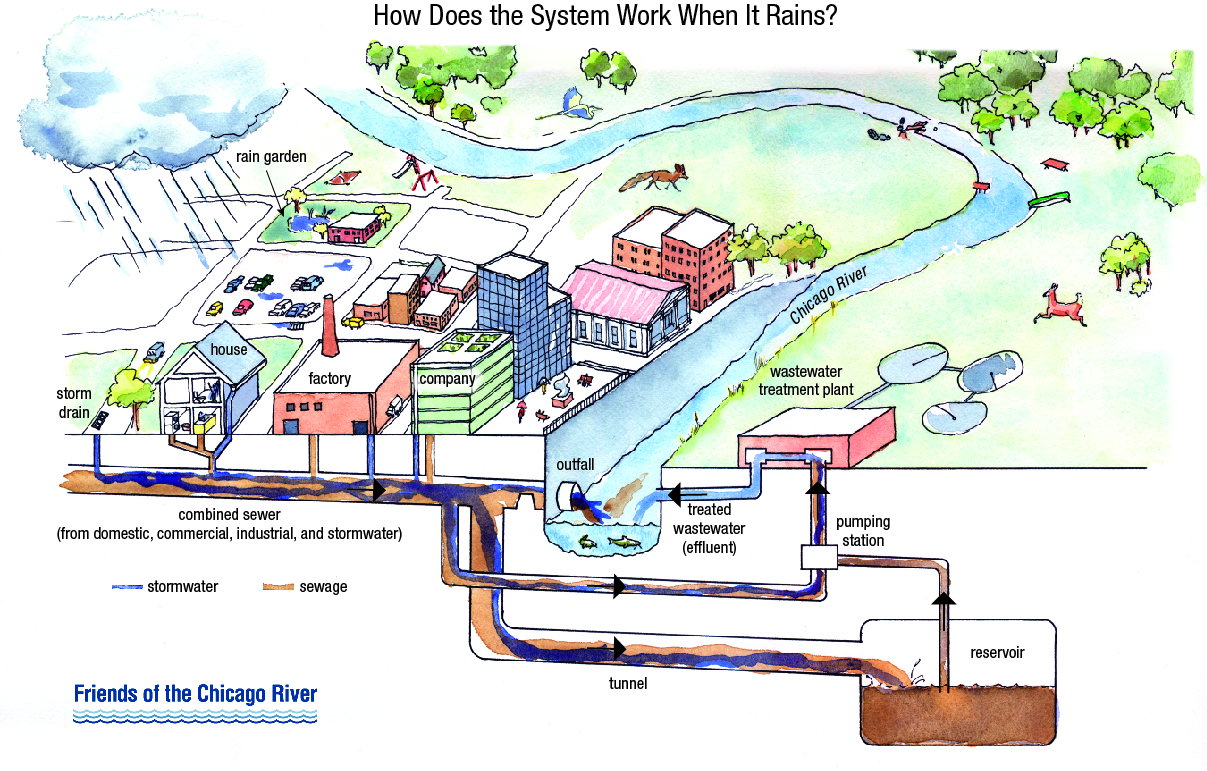 A Closer Look at Combined Sewer Overflows - Overflow Action Days ...