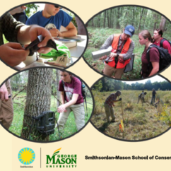 Scholarship Program for SIS students who enroll in the Smithsonian-Mason School of Conservation