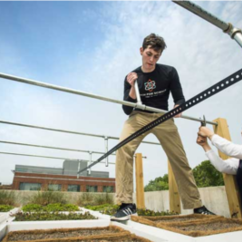 Green roof project to examine energy efficiency, stormwater management