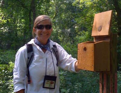 BIS Senior Laura McDonald - Citizen Scientist and Urban Ecologist
