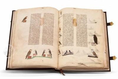 Thumb 1000 600 588 art falconry frederick ii illuminated manuscript facsimile 01