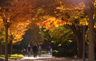 Spotlight on Fall 2015 Topics courses