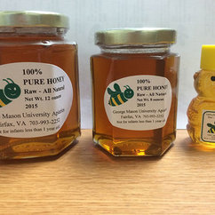 Mason Honey Available November 17, 18