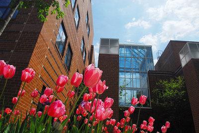 New Century College to Be Renamed the School of Integrative Studies