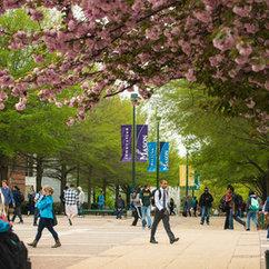 Mason's Undergraduate Economics Program Ranks #2 in Virginia