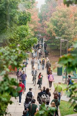 Walkway in fall