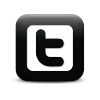 66201c78642dc0f9_twitter-logo-square-webtreatsetc