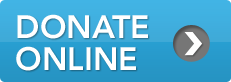 btn-donate-online