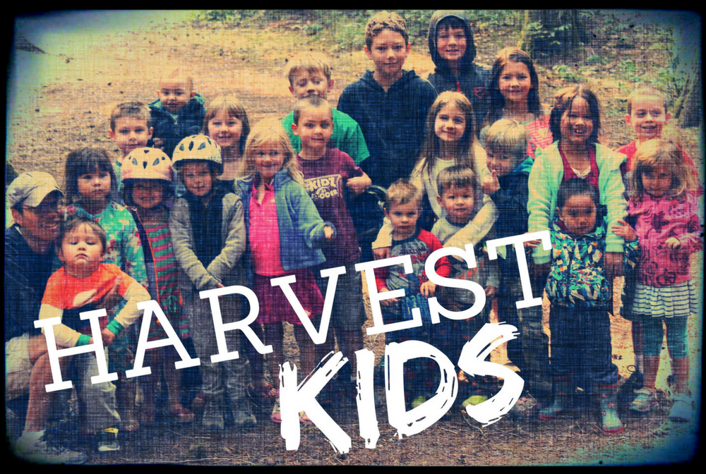 Harvest Kids image