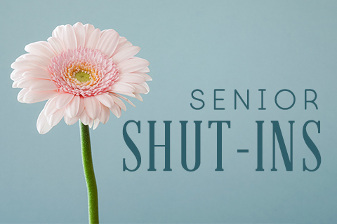 Shut-ins image