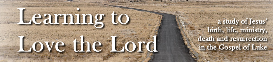 Let God Be the Focus of Your Fear and Trust (Luke 12:4-7) banner