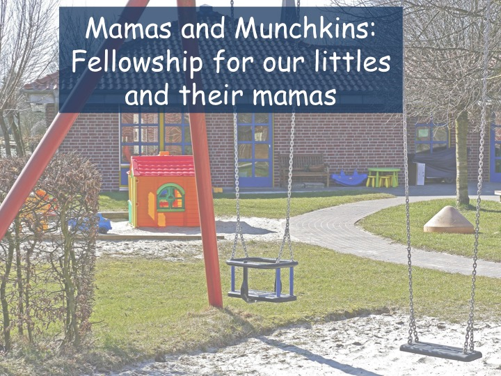 Mamas and Munchkins image