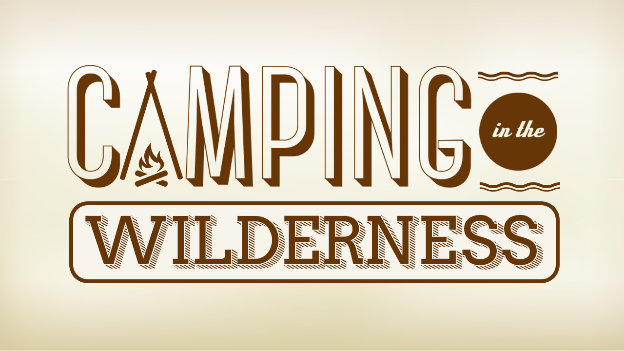 Camping In the Wilderness Cover