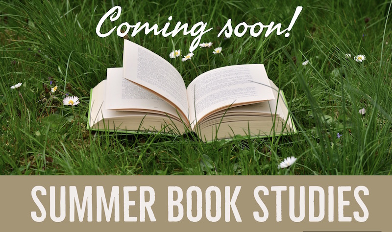 Summer Book Studies 2017 banner image