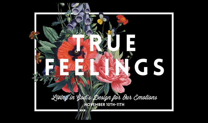 True Feelings Women's Conference 2017 banner image