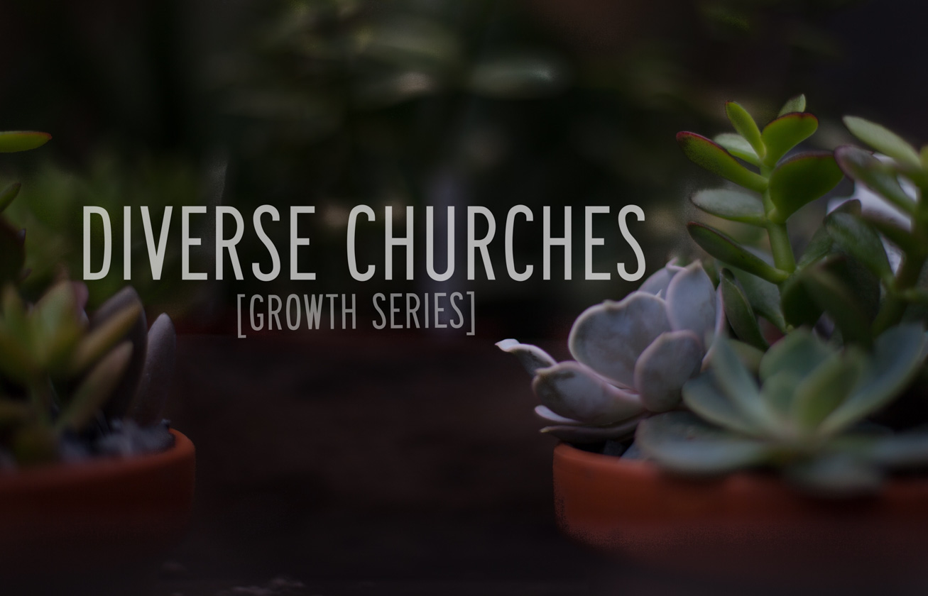 diverse-churches