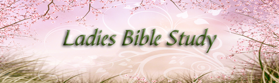 Ladies Bible Study: James banner