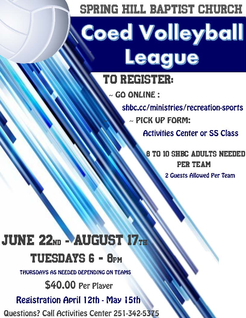 Volleyball Adult League Flyer for web page