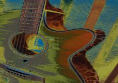 guitar-fin2