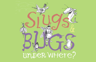 slugs bugs event image