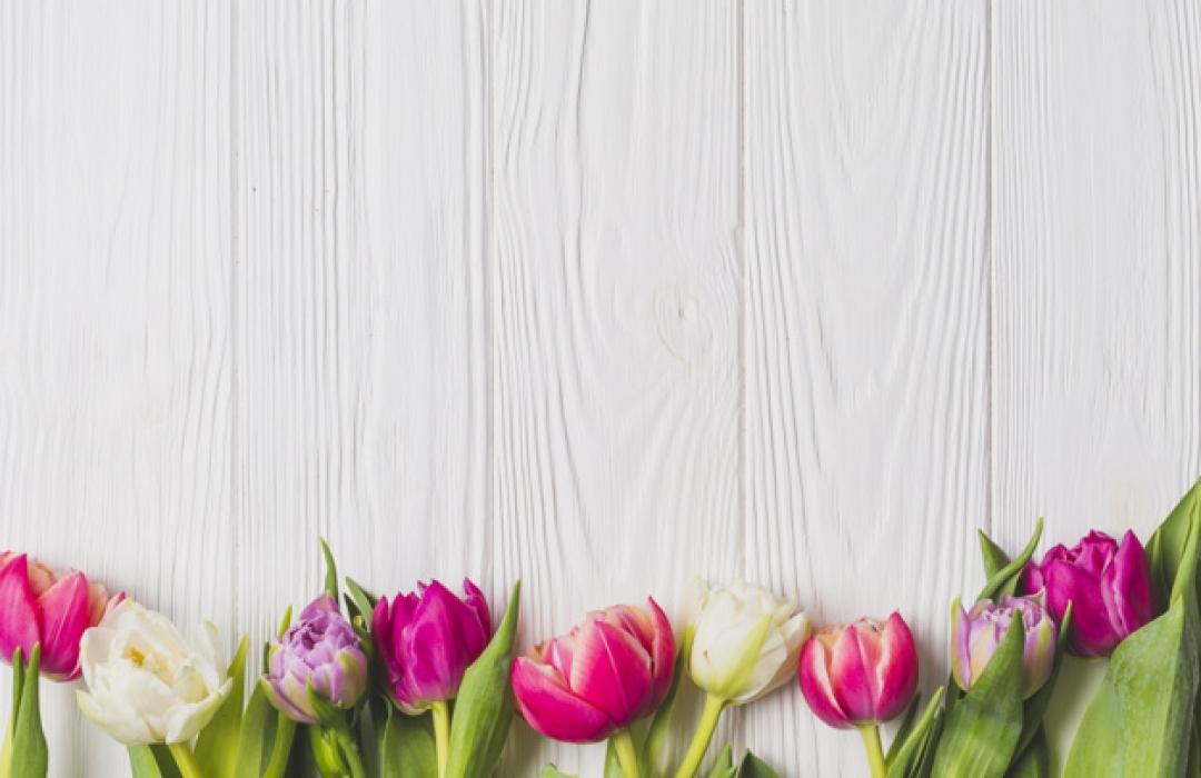bright-tulips-on-wooden-background_23-2147756856_resized image