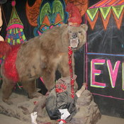 Circus_of_screams_2011_032