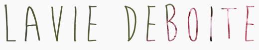 Blog Spotlight: LAVIE DEBOITE