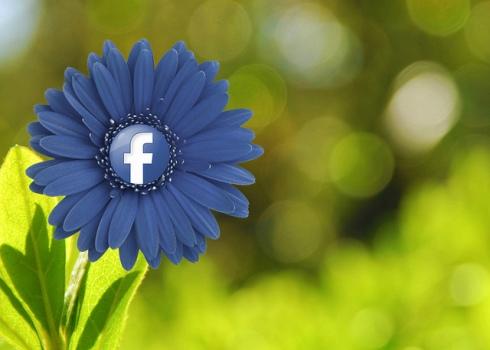 Welche Taktiken setzen weltweit führende Marken auf Facebook ein?