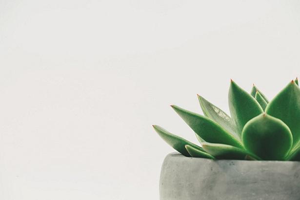 was pr vom minimalismus lernen kann cision