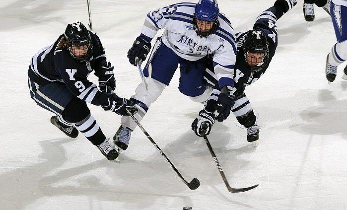Eishockey - 6 rasante Blogs aus Deutschland und der Schweiz