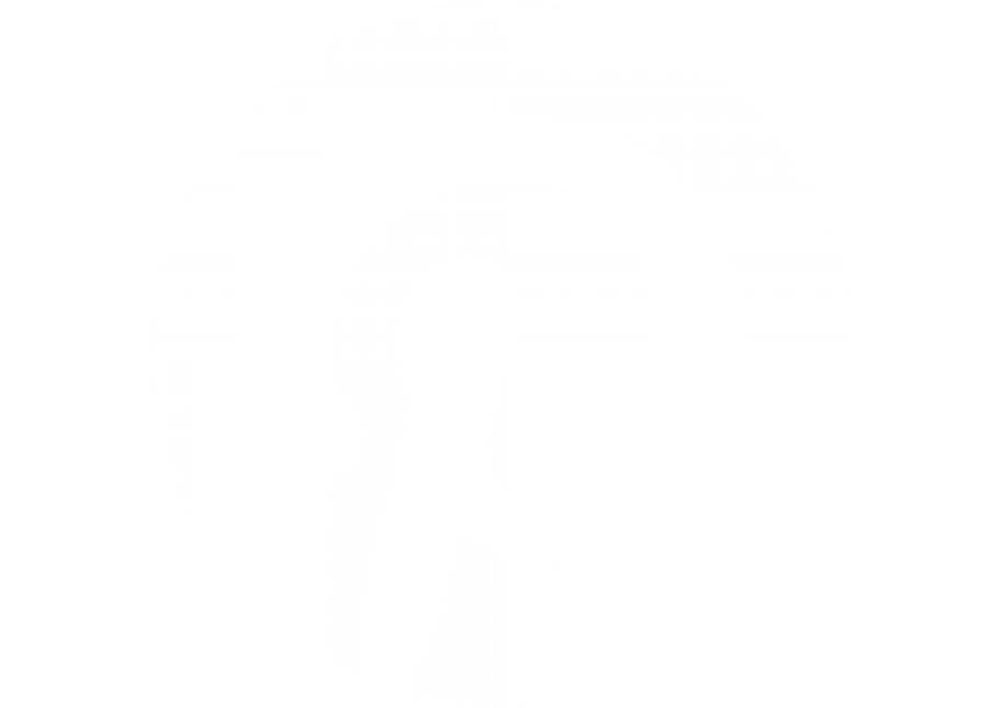 WP_Pinterest-01
