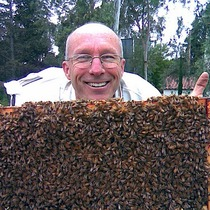 Urban Homesteading Series: Introduction to Beekeeping
