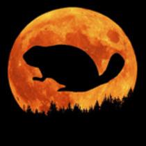 Beaver Moon Rocktober Fest