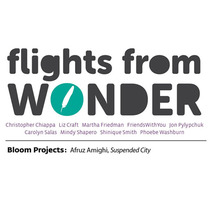 Flights from Wonder &amp; Bloom Projects: Afruz Amighi, Suspended City