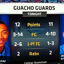 Guacho Guards!