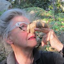 smART Talks: Joan Tanner