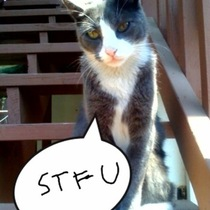 Tyson says..