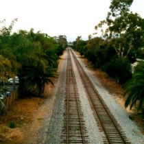 Mobile Post: Above the Tracks (photo)